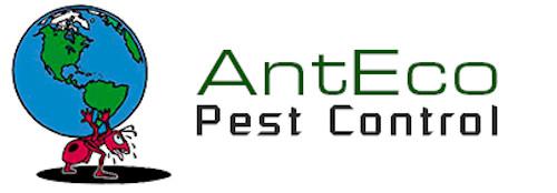 AntEco Pest Control